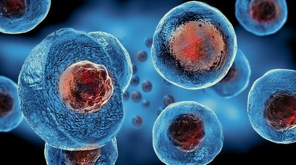 Científicos españoles salvan la vida de seis pacientes logrando eliminar 'virus del SIDA' (+VIDEO)