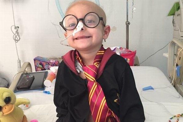 Daniel Radcliffe cumple el mágico sueño de una pottérica con leucemia #VIDEO