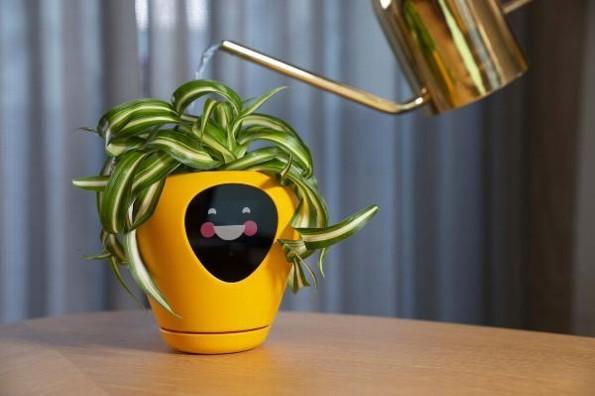 Diseñan maceta que indica las emociones de tu planta #VIDEO