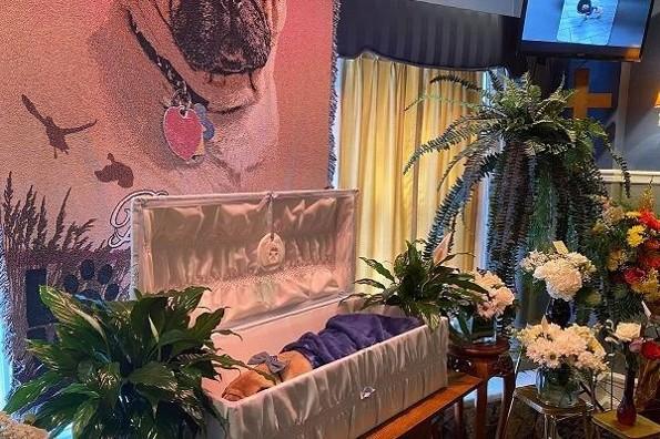 Funeral sin precedente para despedir a su perrito pug (+fotos)